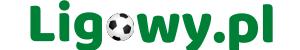 ligowy.pl – Mecze na żywo niższych lig piłkarskich